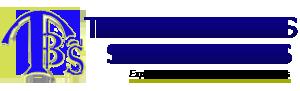 TAV BUSINESS SOLUTIONS Logo